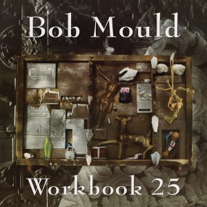 Mould_Bob_Workbook_25_OV-36-revised-300x300